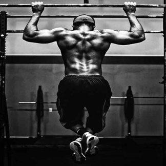 Тренажёры ФС-1 для workout